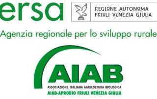 soia biologica e gestione malerbe in agricoltura biologica