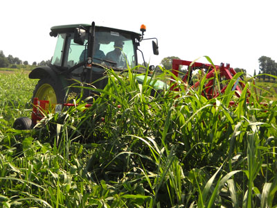 cimatrice per agricoltura biologica