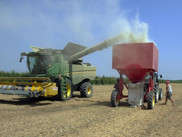insaccatrice big bag per cereali